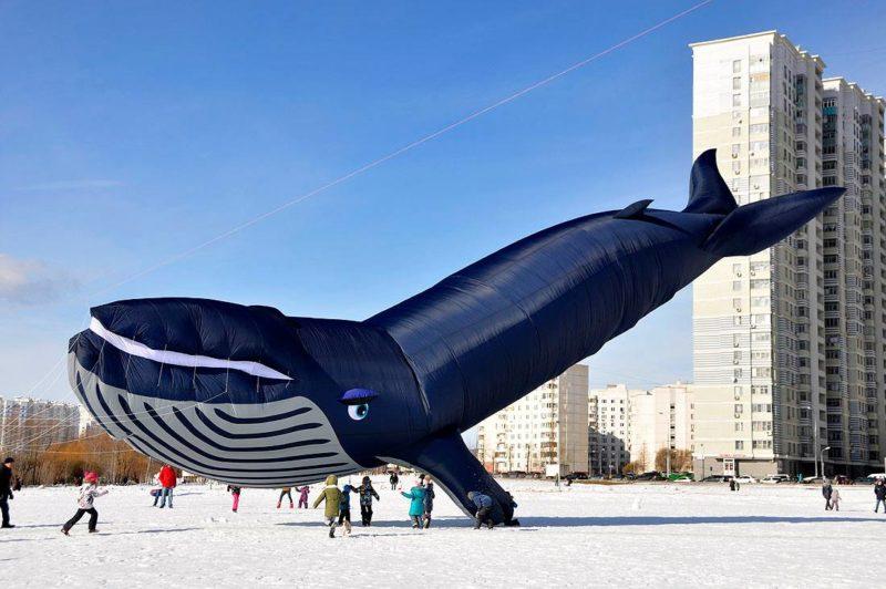 Запуск воздушного змея Кит на поле в Бутово