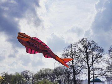 Воздушный змей в форме рыбы летает на фоне стволов деревьев и облаков