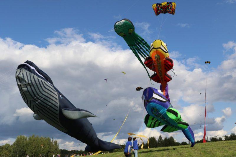 Люди в поле запускают воздушных змеев в форме кита, рыб, осьминога на фоне облаков