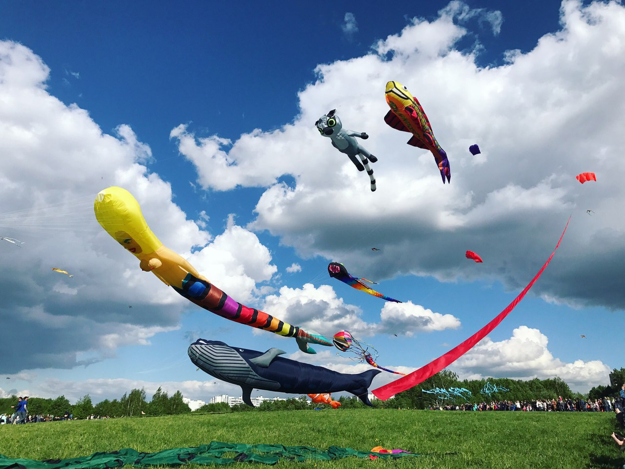 """фестиваль воздушных змеев """"Пестрое небо"""""""