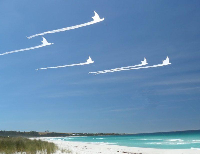 Белые воздушные змеи с длинными хвостами на фоне тропического пляжа