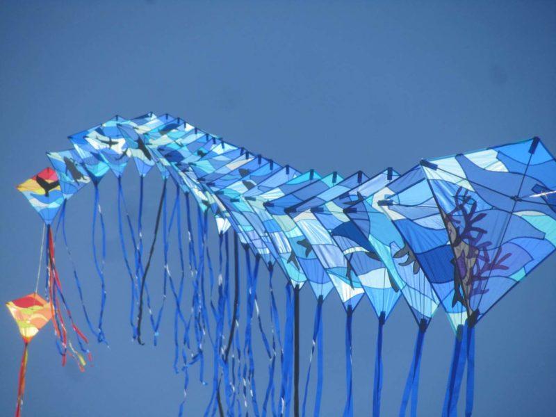 Воздушные змеи в форме ромба голубого цвета с хвостами запущенные поездом на фоне голубого неба